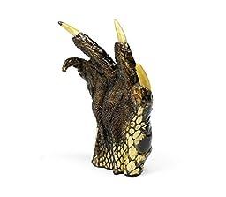 Taxidermy Preserved Alligator Claw 4-6\