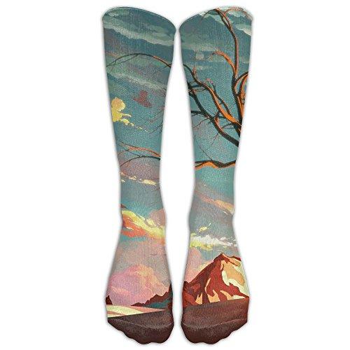 Artwork Landscape Nature Trees Long Dress Socks Football Sports Socks Casual Over-the-Calf Tube ()