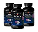 Mood and Focus Supplements - L-DOPA 350 MG - MUCUNA PRURIENS Extract - Velvet Beans - dopa mucuna Now Foods - 3 Bottles (180 Capsules)