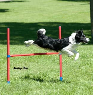 Lixit Dog Agility Equipment