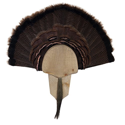 Fan Mount Kit - Walnut Hollow Country Mount Turkey Fan Mount & Display Kit, Solid Wood Rustic Barn Board Finish