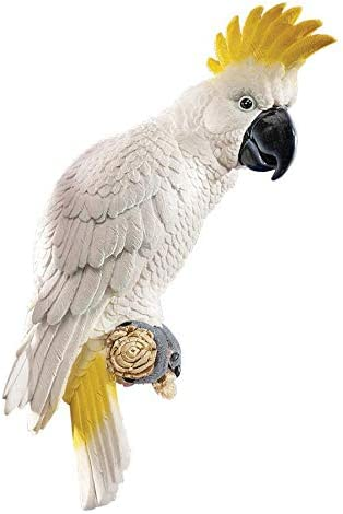 Design Toscano Citron Cockatoo Bird Tropical Decor Wall Sculpture, 14 Inch, Polyresin, Full Color