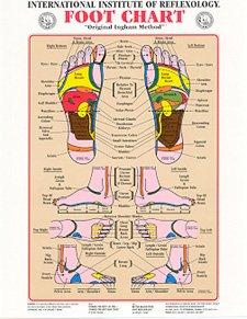 reflexology chart laminated - 9