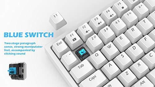 Smart Duck XS-84 75% TKL Wired Mechanical Gaming Keyboard,RGB Music Rhythm LED Backlit N-Key Rollover, BlueSwitch (White)