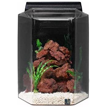 All glass aquarium aag17004 15column black for 20 gallon hexagon fish tank