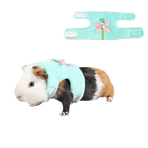 Stock Show Small Animals Outdoor Walking Vest Harness with Cute Butterfly Decor and Lead Leash Set Rabbit Hedgehog Ferret Guinea Pigs Piggies Squirrel Kitten Puppy Comfort Clothes Accessory, Green
