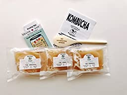 3X Organic Kombucha SCOBY cultures with 3 Cups strong starter kombucha tea.