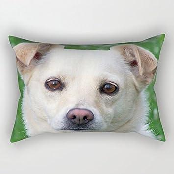 alphadecor manta funda de almohada de perros, para Navidad, GF, ropa de cama
