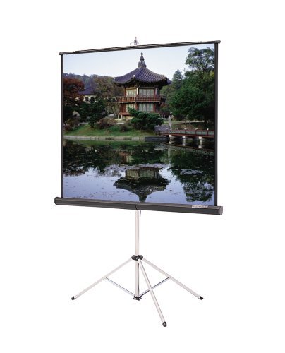 Picture King High Contrast Matte White Portable Projection Screen Viewing Area: 60 H x 60 W by Da-Lite