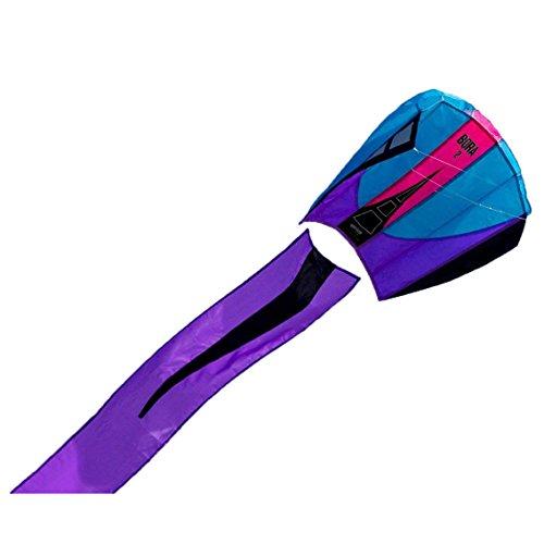 Prism Bora 2 Single-line Parafoil Kite, Frost
