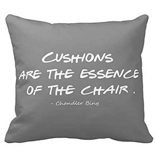 Tv Show Friends Quote 20x20 inches pillow Case Chandler Bing Pillow Cover Home (Chandler Throw)