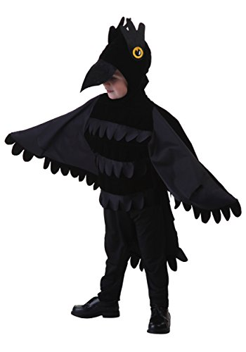 Toddler Crow Costume 4T