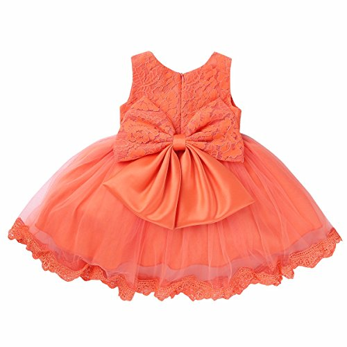 FEESHOW Baby Girl Bowknot Lace Flower Wedding Pageant Birthday Tutu Dress Baptism Christening Gown
