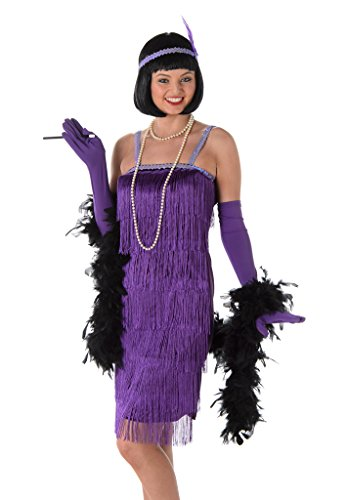 Women's Purple Flapper Dress Costume Halloween - (S) (Cheap Flapper Dress Costume)