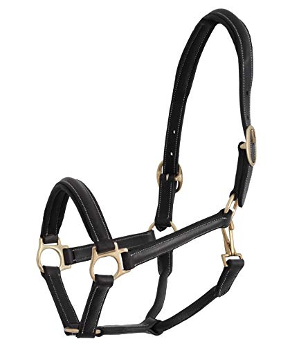 【 限定】ジャクソン(Jacson) 馬用 ホルター レザーホルターカンクン Leather halter Cancun ブラック Ponny 587071 587071 [並行輸入品]   B07KR9J9G3