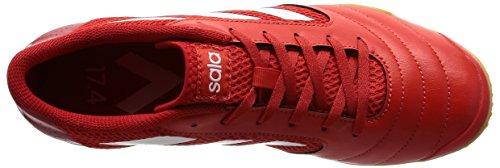 adidas Ace 17.4 Sala, Botas de Fútbol para Hombre Rojo (Red / Ftwr White / Scarlet)
