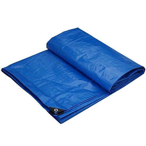 に負ける言い聞かせる人質CHAOXIANG オーニング 厚い 折りたたみ可能 両面 防水 耐寒性 シェード 耐摩耗性 軽量 耐食性 PE 青、 175g/m 2、 厚さ 0.32mm、 10サイズ (色 : 青, サイズ さいず : 10×12m)