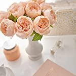 Butterfly-Craze-Artificial-Peony-Silk-Flower-Bouquet-for-Wedding-Floral-Arrangements-and-Home-Decoration-Peach-Color-5-Stem-Per-Set