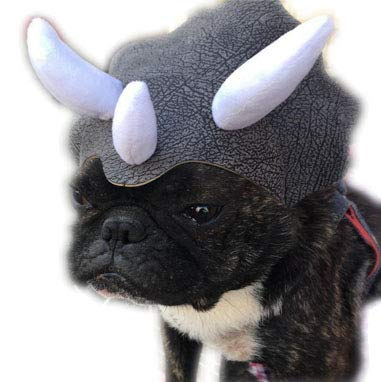 PetBoBo Pet Halloween Hat for Dog Cats Party Clothes, Christmas Halloween Cosplays Accessories Holiday Costume Supplies Funny Dog Costume Triceratops Dinosaur