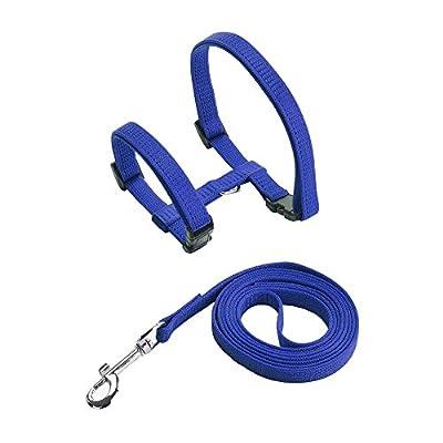 Cat Harness Adjustable Nylon Strap Collar - 2/Pack
