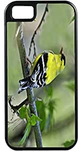 Blueberry Design iPhone 4 iPhone 4S Case Yellow Bird on a branch - Ideal Gift