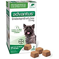 Bayer Advantus, Small Dogs 4-22 lbs, Soft Chew Flea Treatment, Savory Meat Flavored, Same-As-Vet, 7 Daily doses