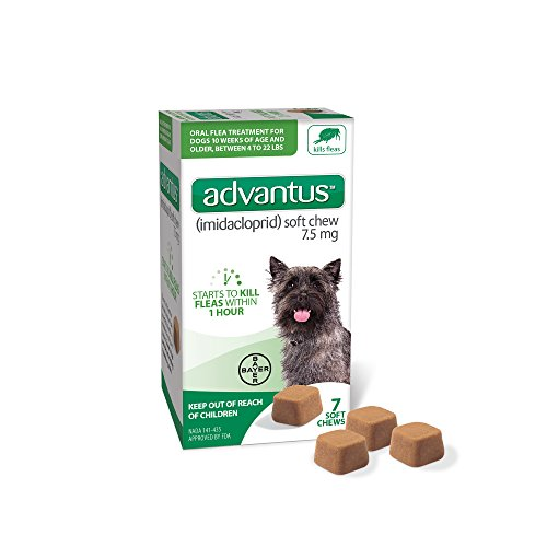 Bayer Advantus, Small Dogs 4-22 lbs, Soft Chew Flea Treatment, Savory Meat Flavored, Same-As-Vet, 7...
