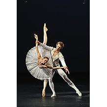 El Ballet Bolxoi A Santiago De Xile: Una Trobada Personal Amb Els Membres Del Ballet Bolshoi (Catalan Edition)
