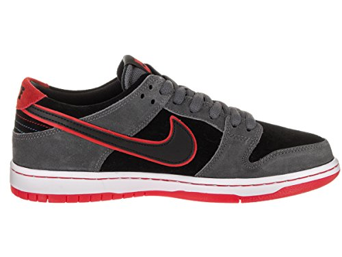 SB ZOOM DUNK LOW PRO IW - 895969-006