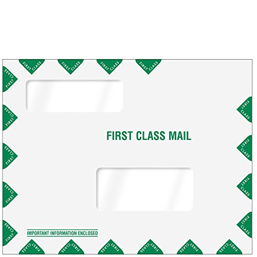 Double Window First Class Mailing Envelope - Landscape ()