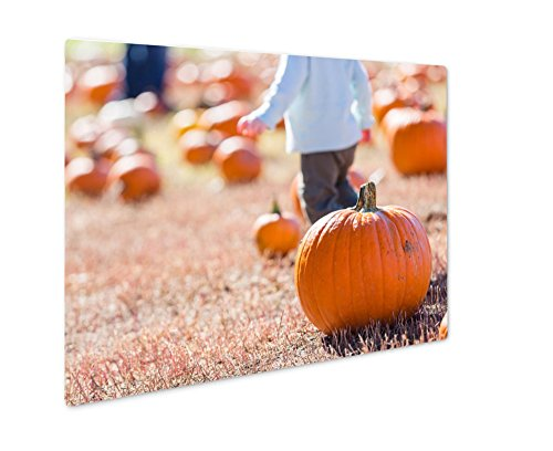 Ashley Giclee Pumpkin Patch, Wall Art Photo Print On Metal Panel, Color, 8x10, Floating Frame, AG6121633 -
