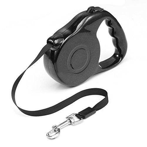 The Best Retractable Dog Leash 4