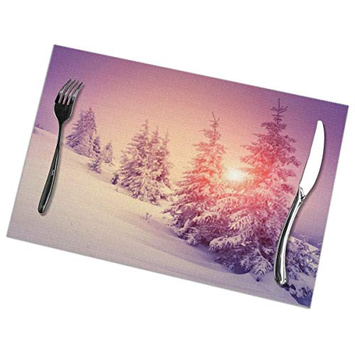 Placemats for Dining Table Set of 6 Beautiful Snow Scene Wear-Resistant Heat-Resistant Kitchen Table Mats 18