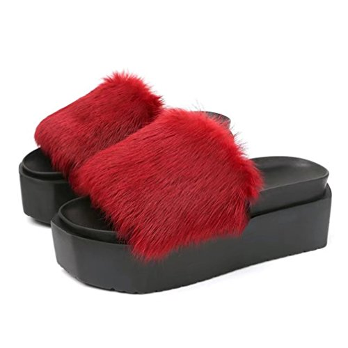 Zapatillas De Verano Con Sandalias Solapa Gruesos Deporte Red Mujeres Zapatos TWGDH Bajos 0Yzwxw