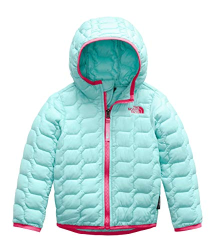 The North Face Kids Baby Girl's Thermoball¿ Hoodie (Toddler) Mint Blue 3T (Sweatshirt Kids Face)