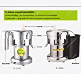 WF-A3000/B3000 Electric commercial juicer machine