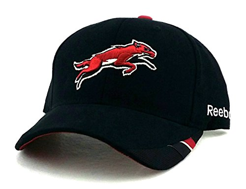 NHL Phoenix Coyotes Structured Adjustable Hat, One Size – DiZiSports Store