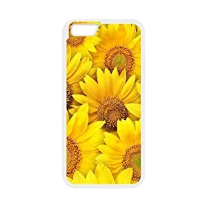 3D Bumper Plastic Customized Case Of Butterfly for iPhone 5,5S wangjiang maoyi by lolosakes