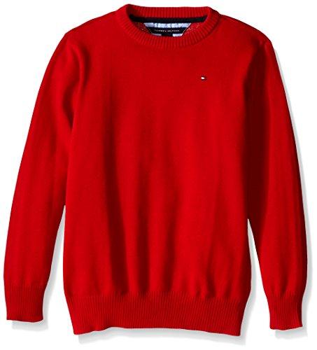 Tommy Hilfiger Big Boys' Long Sleeve Alan Crew Neck Sweater, Bulls Eye, Large by Tommy Hilfiger