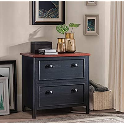 2l-lifestyle-byron-2-drawer-file