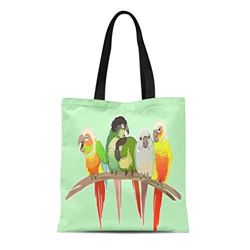- Ablitt Tote Bag Shoulder Bags Canvas Parrot Green Cheek Conures Parakeet Budgie Turqoise Suncheek Grocery bag Women's Handle Shoulder Tote Shopper Handbag