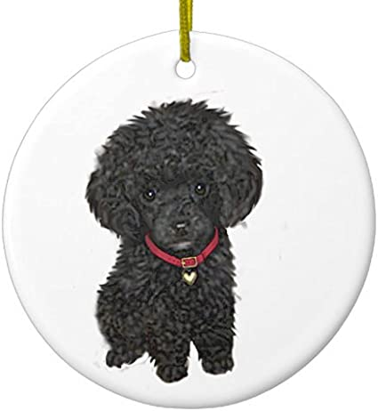 POODLE White Show Dog Green Gift Box Holiday Christmas ORNAMENT