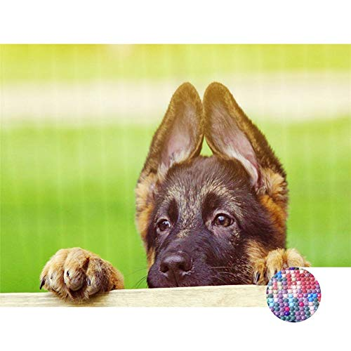 LIPHISFUN DIY 5D Diamond Painting by Number Kit for Adult, Full Round Resin Beads Drill Diamond Embroidery Dotz Kit Home Wall Decor,30x40cm,German Shepherd