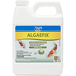 API POND ALGAEFIX Algae Control Solution 32-Ounce Bottle