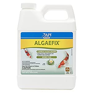 API POND ALGAEFIX Algae Control Solution 32-Ounce Bottle 9