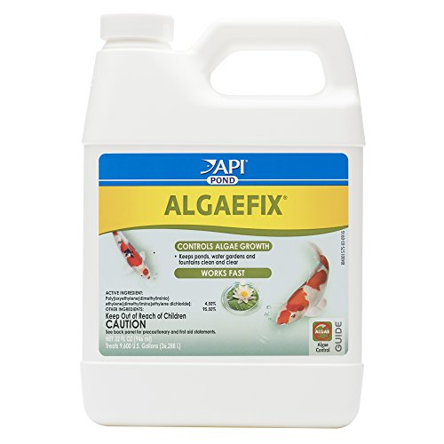 API POND ALGAEFIX Algae Control Solution 32-Ounce (Algae Fish)