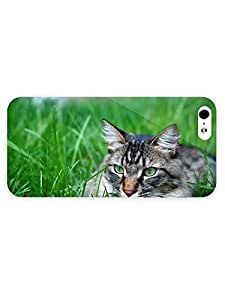 3d Full Wrap Case for iPhone 5/5s Animal Gray Cat34