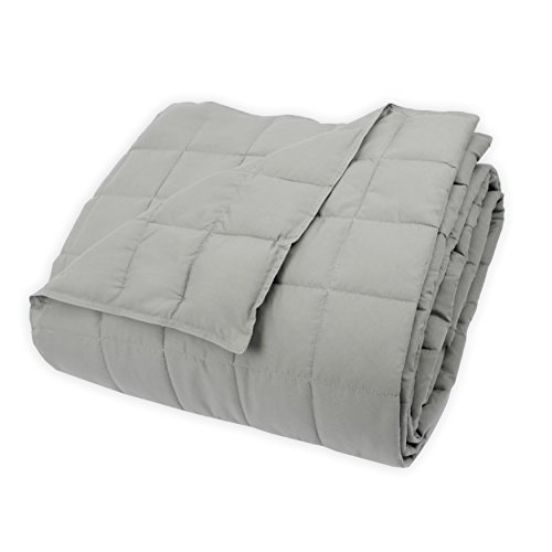 Century Home C479-103 Soft-Touch Quilted Microfiber Blanket,
