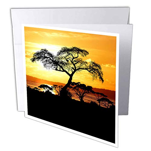 3dRose Sven Herkenrath Nature - African Sunset with Trees and Free Nature Ocean - 12 Greeting Cards with envelopes (gc_309132_2)