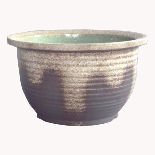 信楽焼 NEW 灰釉千段深 水鉢 15号 睡蓮鉢